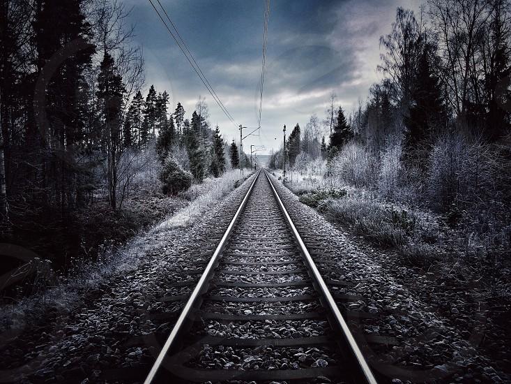 Railway track winter cold trees  photo