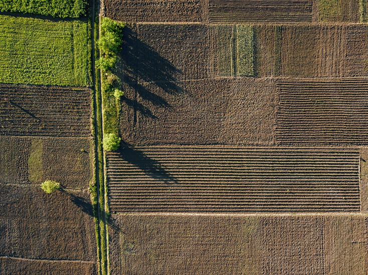 Abstract geometric shapes aerial of agricultural parcels of different crops in brown and green colors. Photo by drone photo