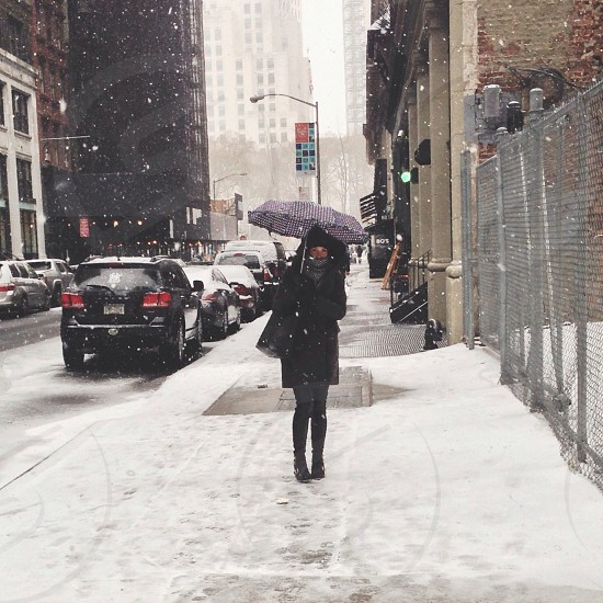 New York in the snow. photo