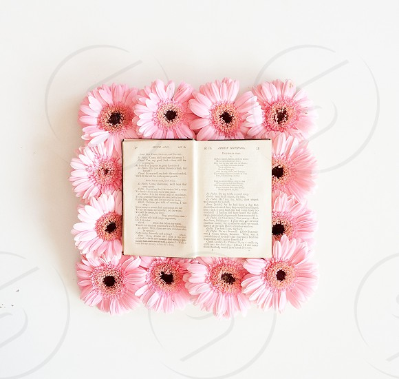 book on flowers photo