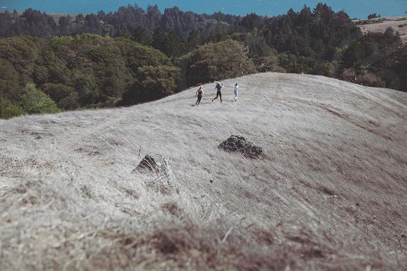 Mount Tamalpais CA photo