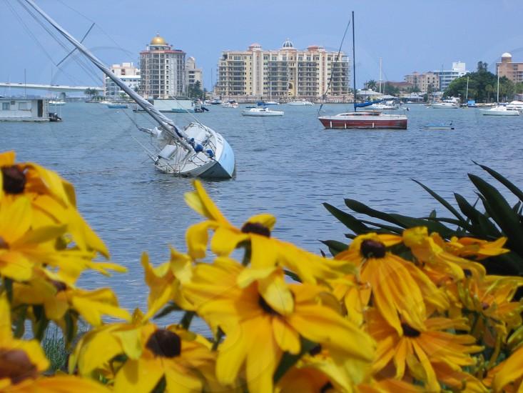 Bay.Boat photo