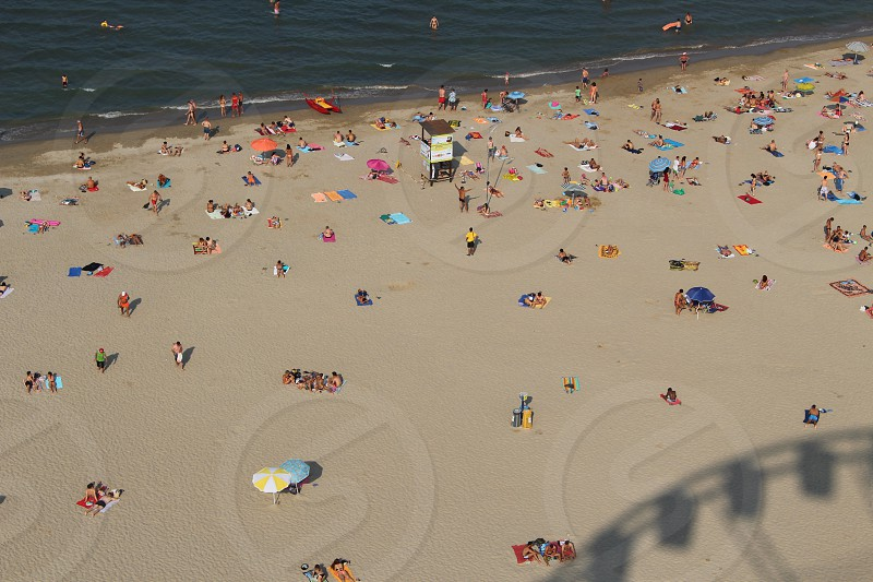 aerial tilt shift photography of people on seashore during daytime photo