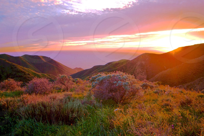 Sunset landscape pink and purple colorful Beautiful Cumming peaceful calm amazing views scenic landscape photography sunset photograph travel Big Sur California plants no people photo