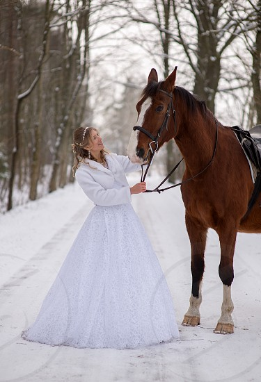bride and horse photo