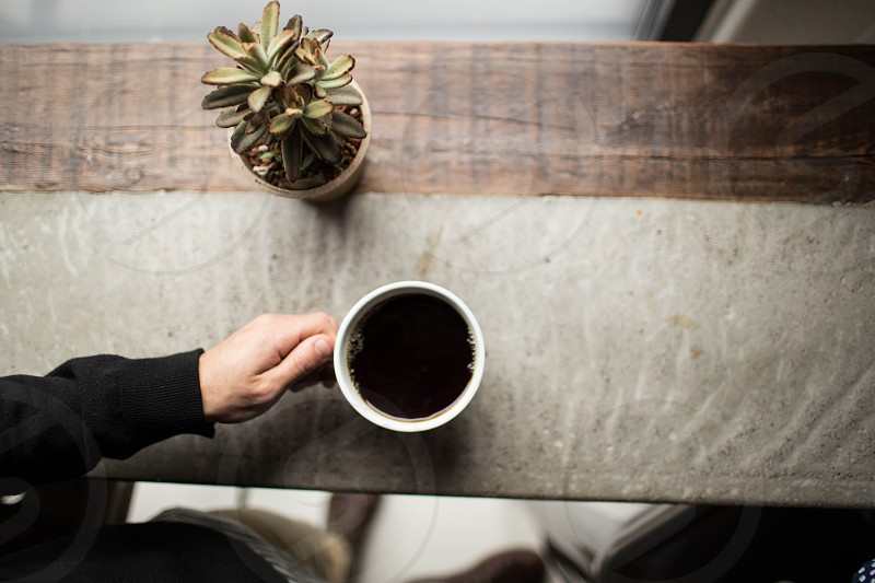person in black long sleeve shirt and white ceramic mug on grey and brown table near succulent plant photo