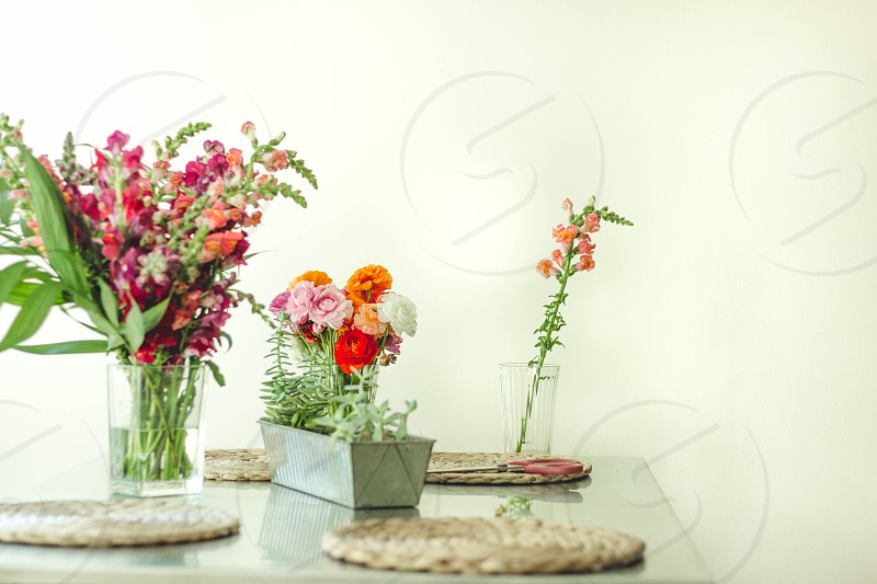 Fresh flowers in the kitchen  photo