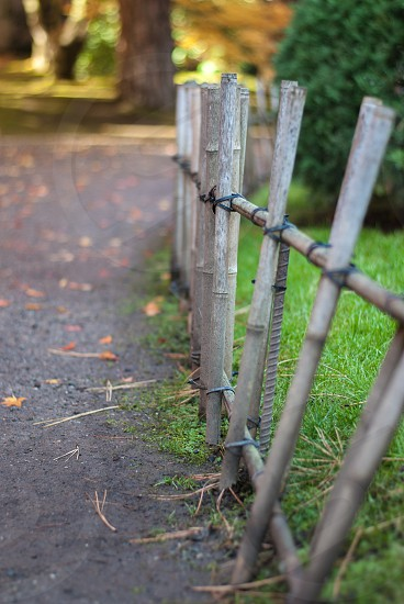 Fence along tranquil pathway with fall colors photo