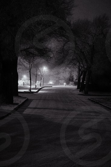 greyscale photography of street covered with snow photo