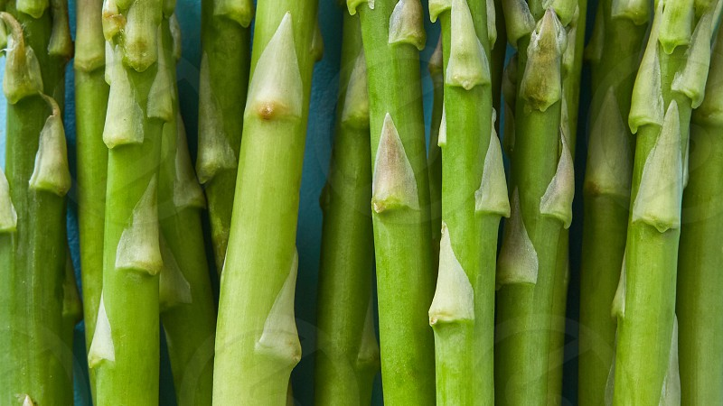 Uncooked raw fresh green asparagus for organic vegetarian cuisine delicious fresh healthy ingredient. Closeup and flay photo