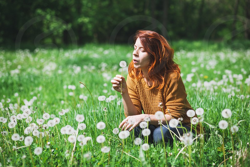 Young woman blowing dandelion in the field photo
