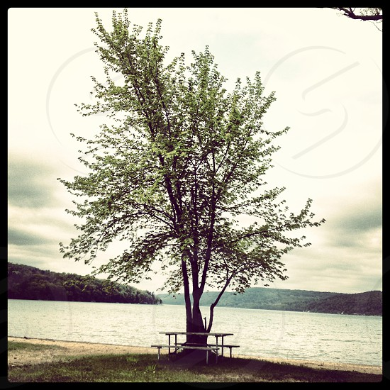 Glimmer glass lake Cooperstown New York  photo