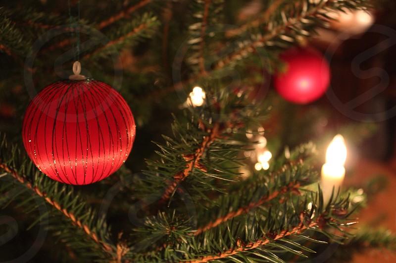 Christmas tree ornament x-mas photo