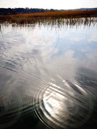 Reflections of a summer gone by at Nissequogue River State Park Long Island. photo