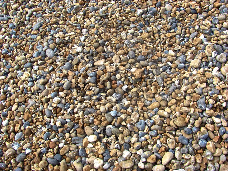 Rocks on Brighton Coast in England. No sand or shells here just rocks!  photo
