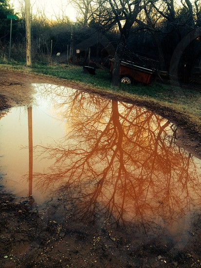 See the beauty in everything! Including puddles! photo