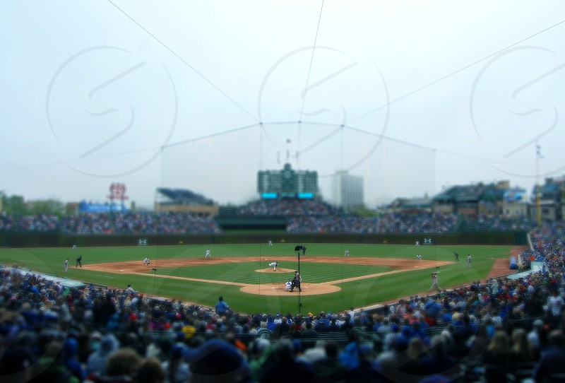 Cubs game photo