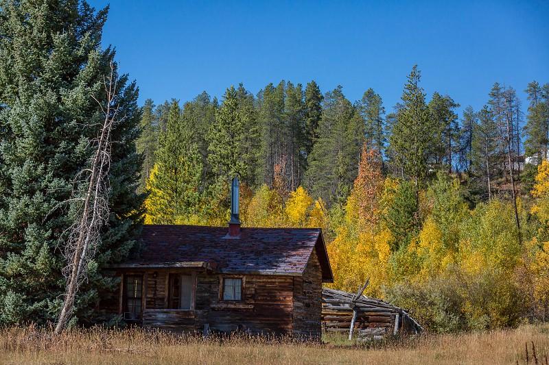Autumn colors in Colorado photo