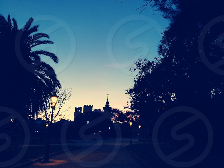 Barcelona Park Ciutadella Palmtree Sunset Threedragon photo