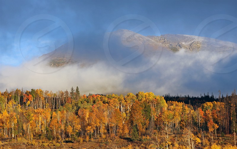 Foggy fall morning in Summit County Colo. photo