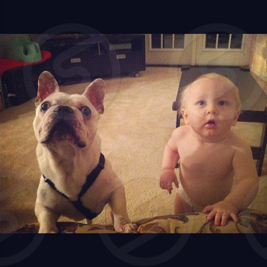 My son Colt and one of our foster dogs. photo