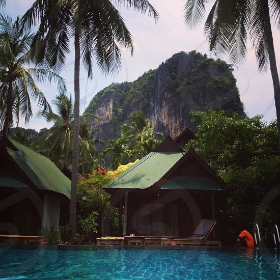 Railay Thailand - Man in orange is hidden a in shadows beneath coconut trees near pool photo