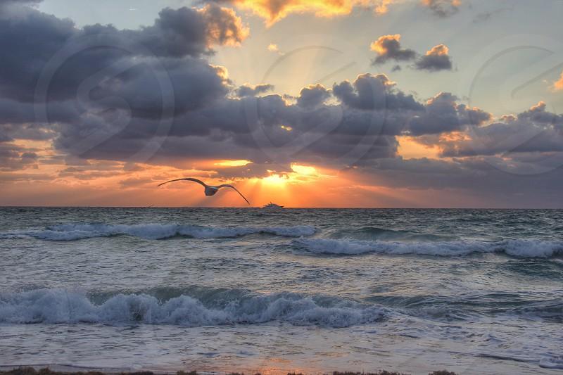 Another gorgeous sunrise  photo