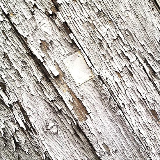 stainless steel screw photo