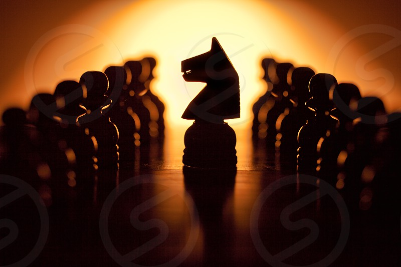 Black Knight and Pawns photo