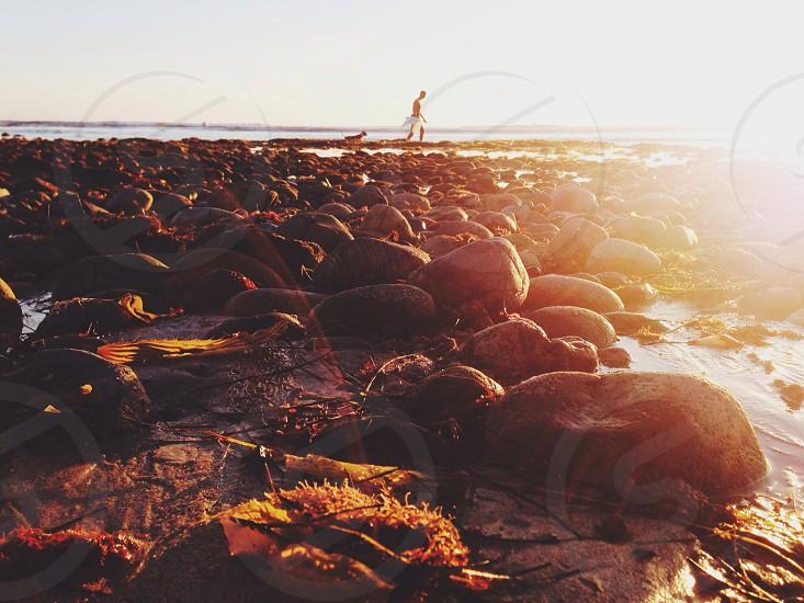 man on rocky beach with sunrays photography  photo