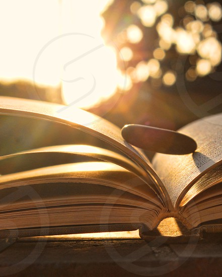 Morning sun shines on an open book with a stone on it. photo