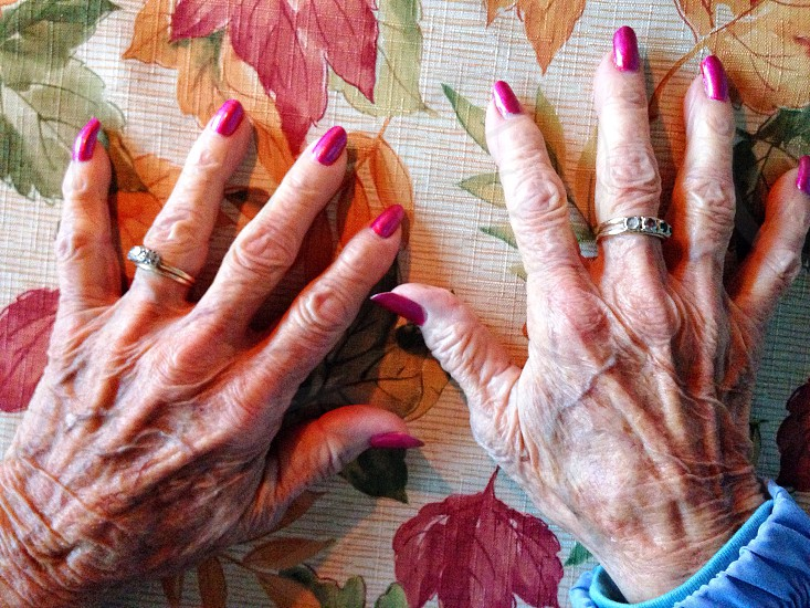 Grandmother's hands at the Thanksgiving table photo