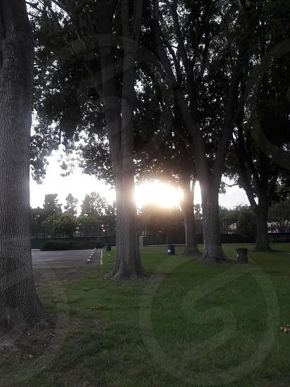 el parque photo