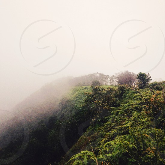 Hawaii Hiking photo