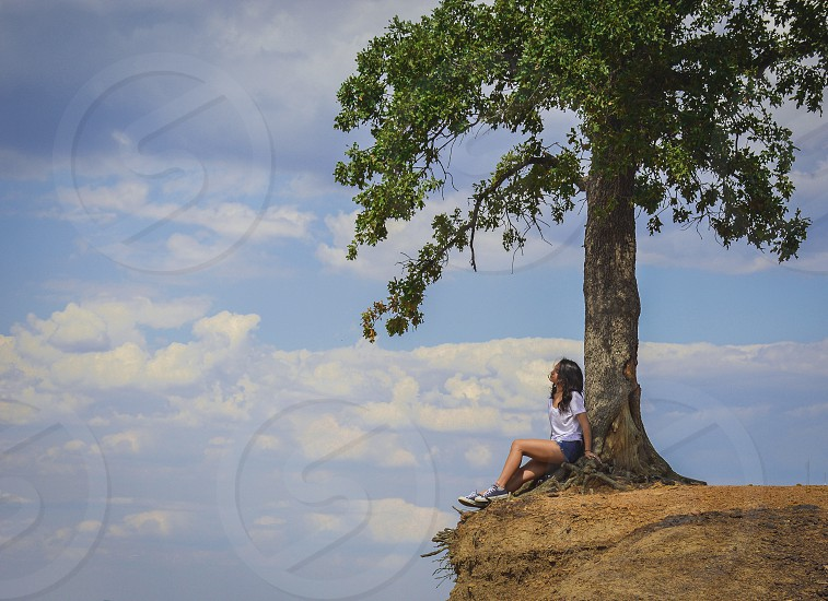 Lonely tree and summer day. photo