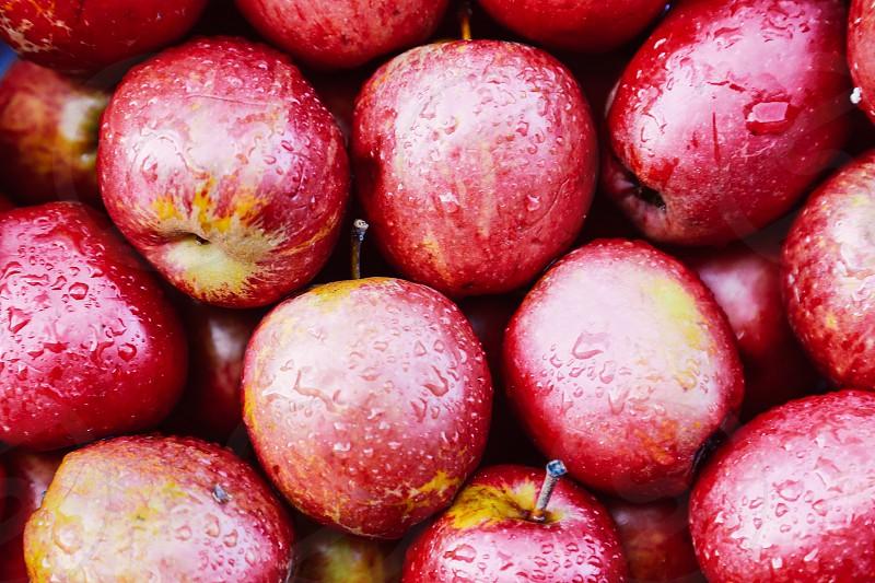 Circles circle fruit apples red fruits red apples close up rain drops wet fresh fruit photo