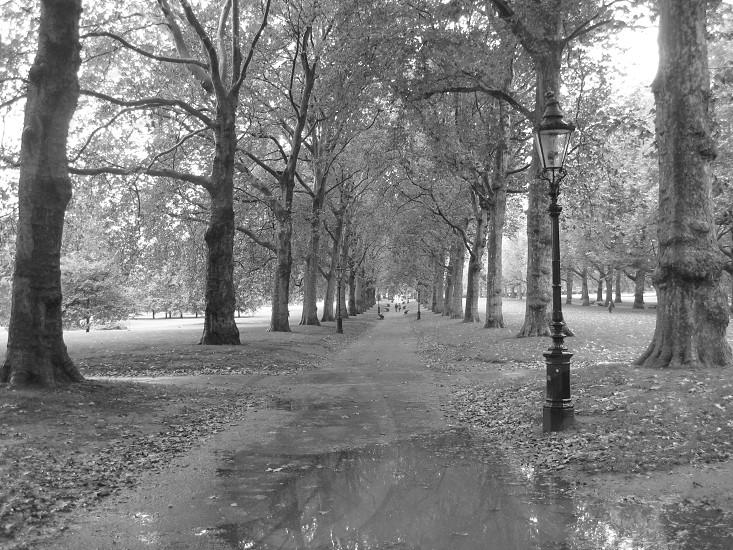 Stroll through a park in London photo