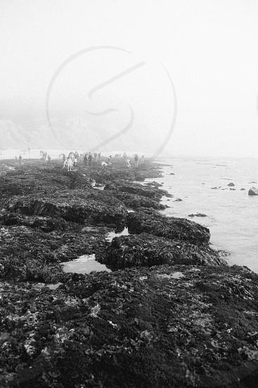 Moss Beach photo