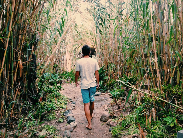 man wearing white t-shirt walking in the middle of bamboo trees photo