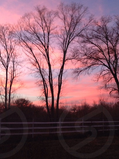Albuquerque New Mexico sunset pink purple beautiful breath taking farm ranch photo