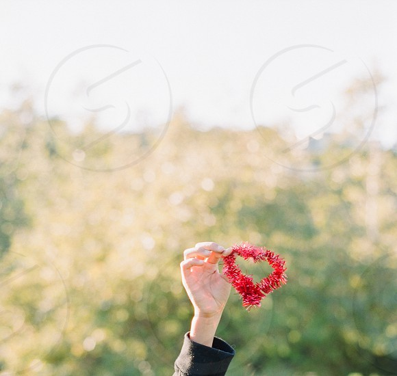 ribbon red heart pretty hand holding object photo