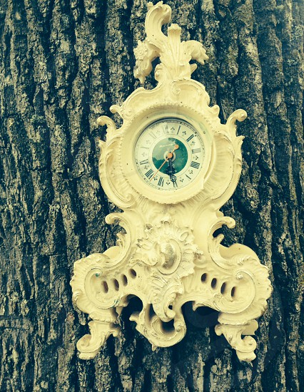 Tree o'clock photo