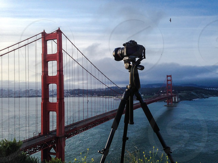 Capturing magnificent Golden Gate Bridge - famous landmark in San Francisco California photo