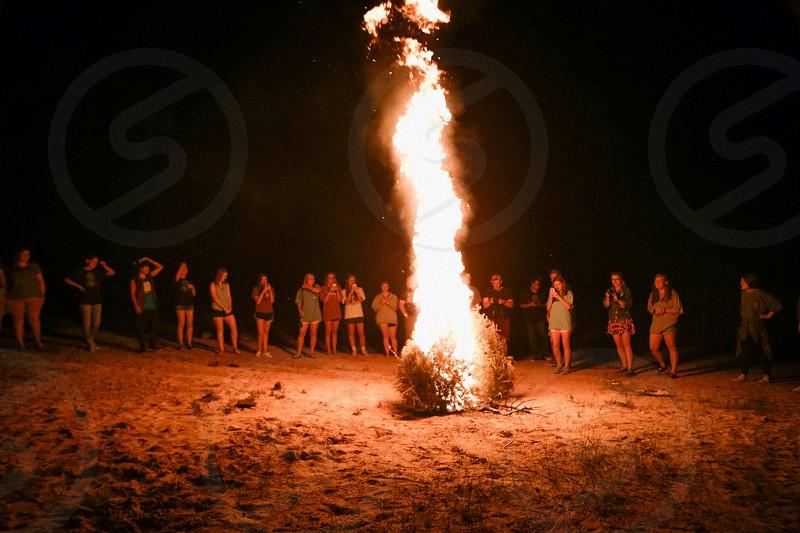 fire campfire embers burn flame bonfire tree photo