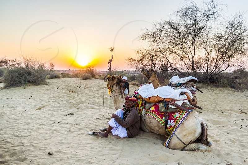Sunset over the dunes of Rajasthan India.     photo