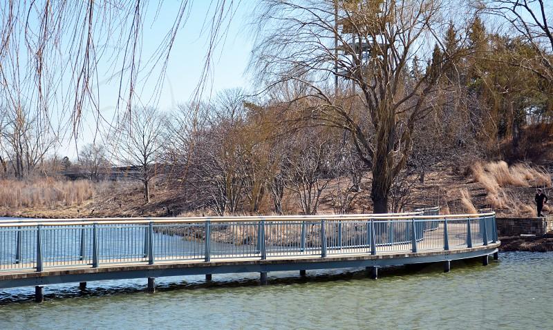 Bridge BotanicGarden water chicago photo