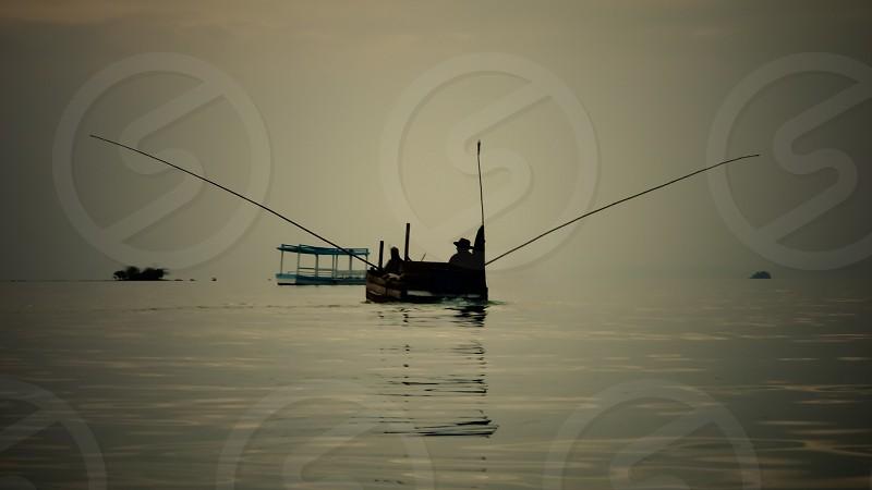 Floating bird (Vietnam) photo