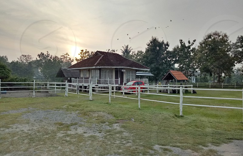 country farm house and animal photo