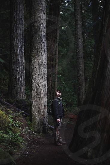 man with backpack in forest looking up at trees photo