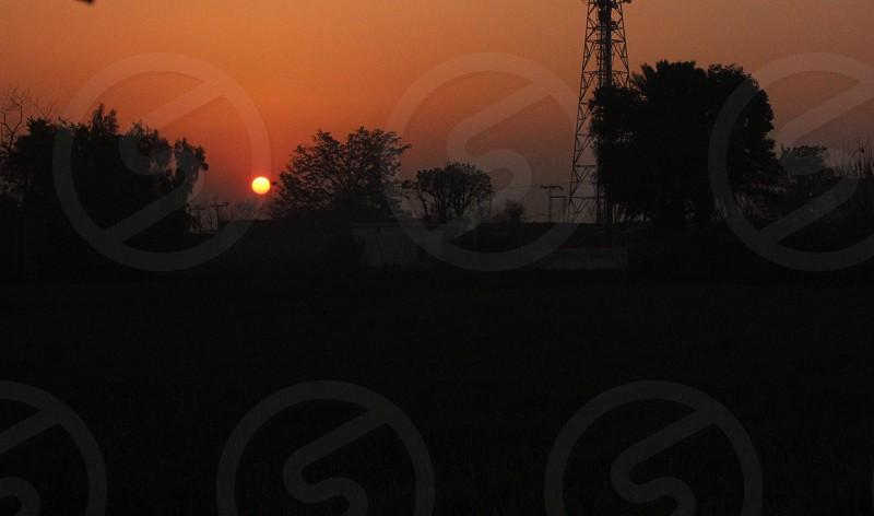 Sun Dropped  photo